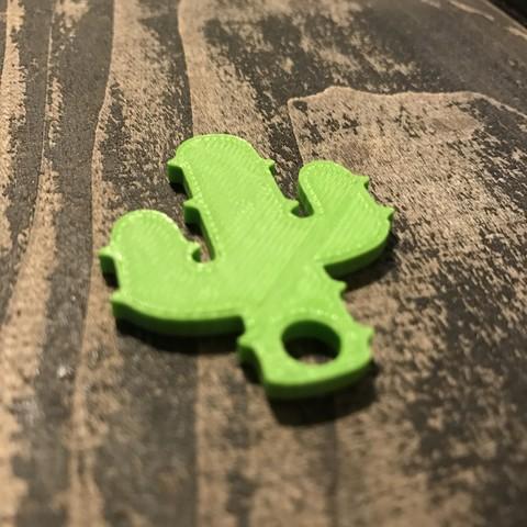 3.JPG Download free STL file Cactus keychain or pendant • 3D printing model, Free-3D-Models