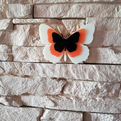 20170713_102851.jpg Télécharger fichier STL papillons en relief • Objet pour impression 3D, catf3d