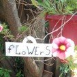 Download 3D print files Pancarte flowers, catf3d