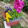 Download 3D printing models colorful planter, catf3d