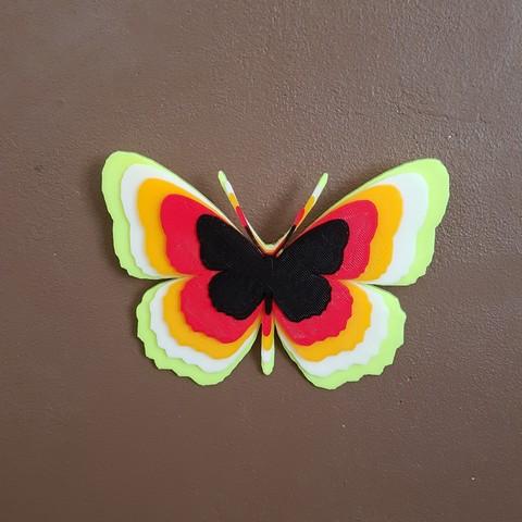 20180530_143347.jpg Télécharger fichier STL papillons en relief • Objet pour impression 3D, catf3d
