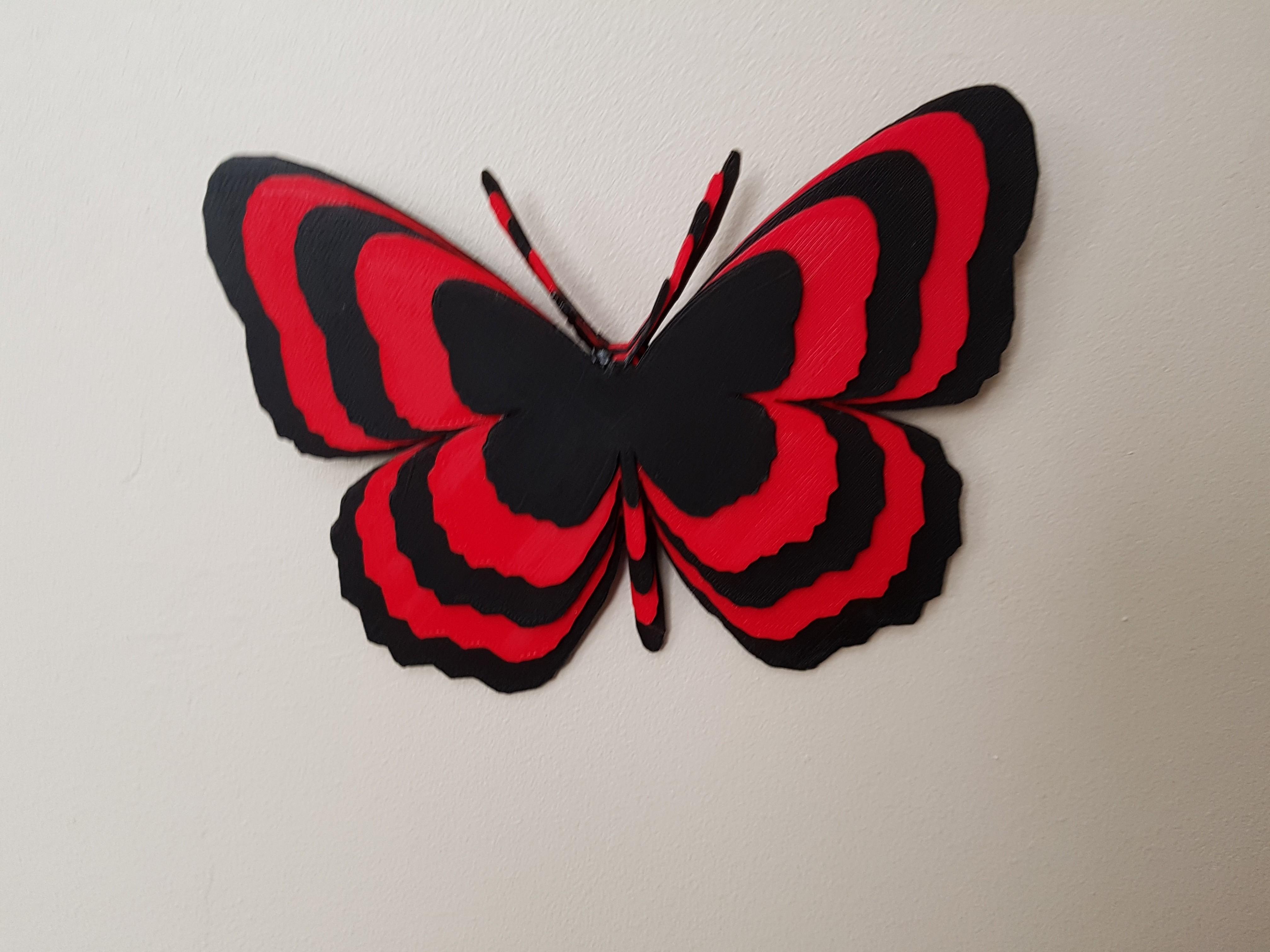 20180530_163440.jpg Télécharger fichier STL papillons en relief • Objet pour impression 3D, catf3d