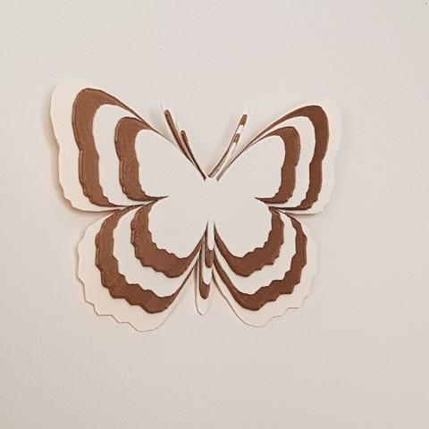 20180624_181729.jpg Télécharger fichier STL papillons en relief • Objet pour impression 3D, catf3d