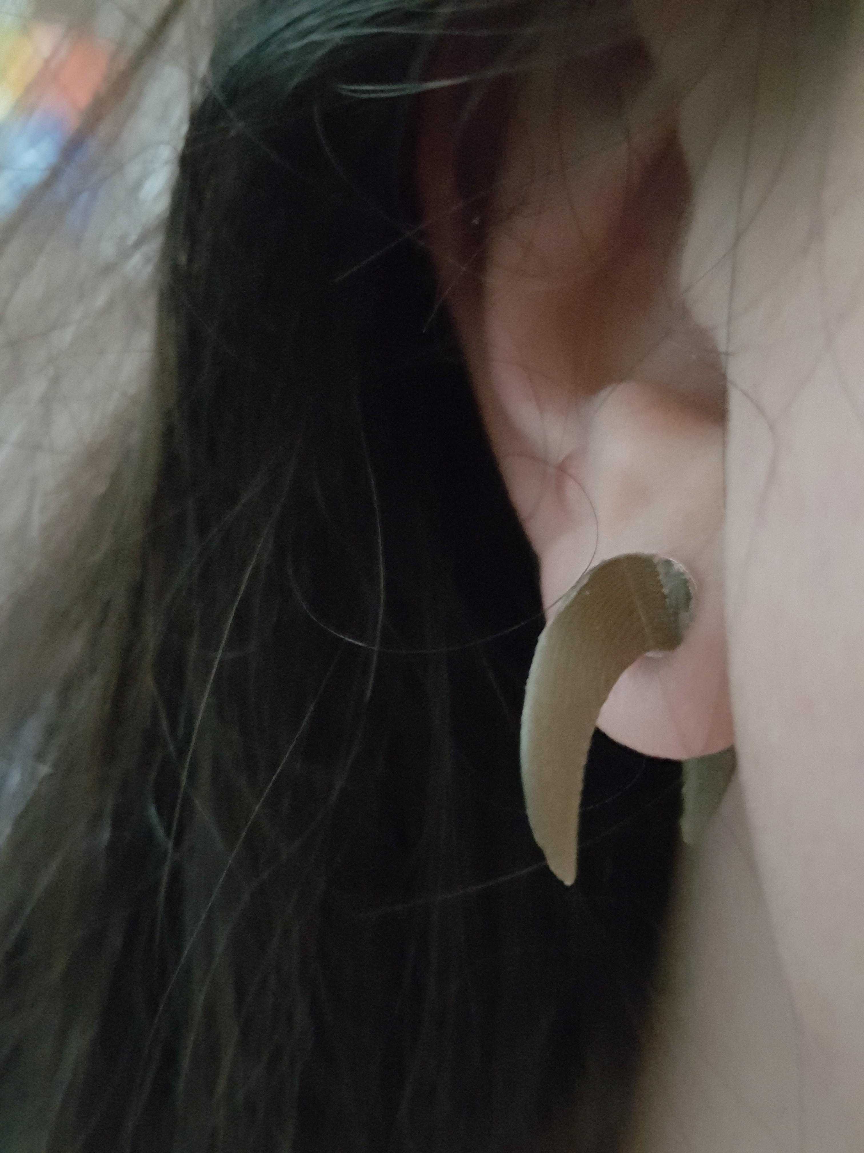20180202_091355.jpg Download STL file earring horns • 3D print template, catf3d