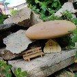 """Télécharger fichier STL gratuit champignon """"maison miniature"""" et/ou """"serre livre"""", catf3d"""