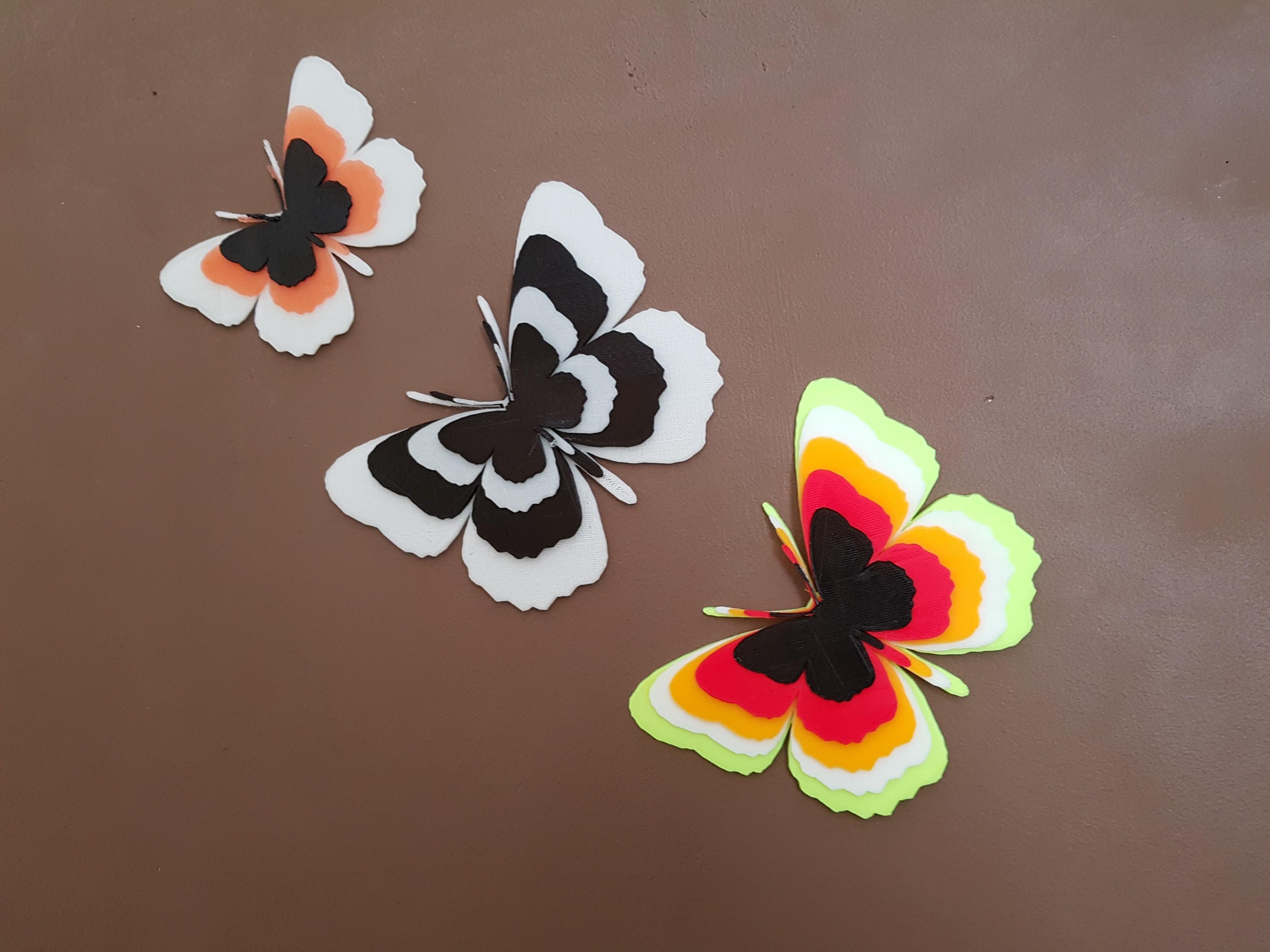 20180528_144422.jpg Télécharger fichier STL papillons en relief • Objet pour impression 3D, catf3d