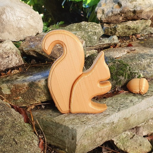 20190925_100314.jpg Download STL file the squirrel • 3D print model, catf3d