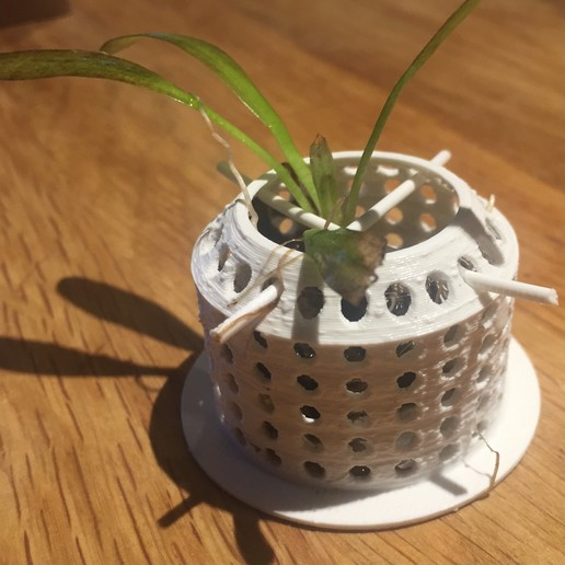 Download free STL file Aquarium planter • 3D printing design, Pator12