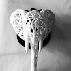 STL Éléphant Voronoi, Mouket