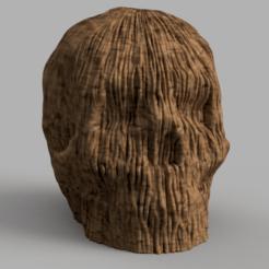 skull wood rendu 1 .png Download STL file Skull wood X2 • 3D printer design, Motek3D
