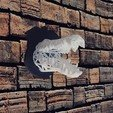 crocro.jpg Download STL file Voronoi crocodile • 3D printable design, motek