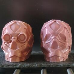 IMG_20201216_182653.jpg Download free STL file Skull X2 • 3D printable template, motek