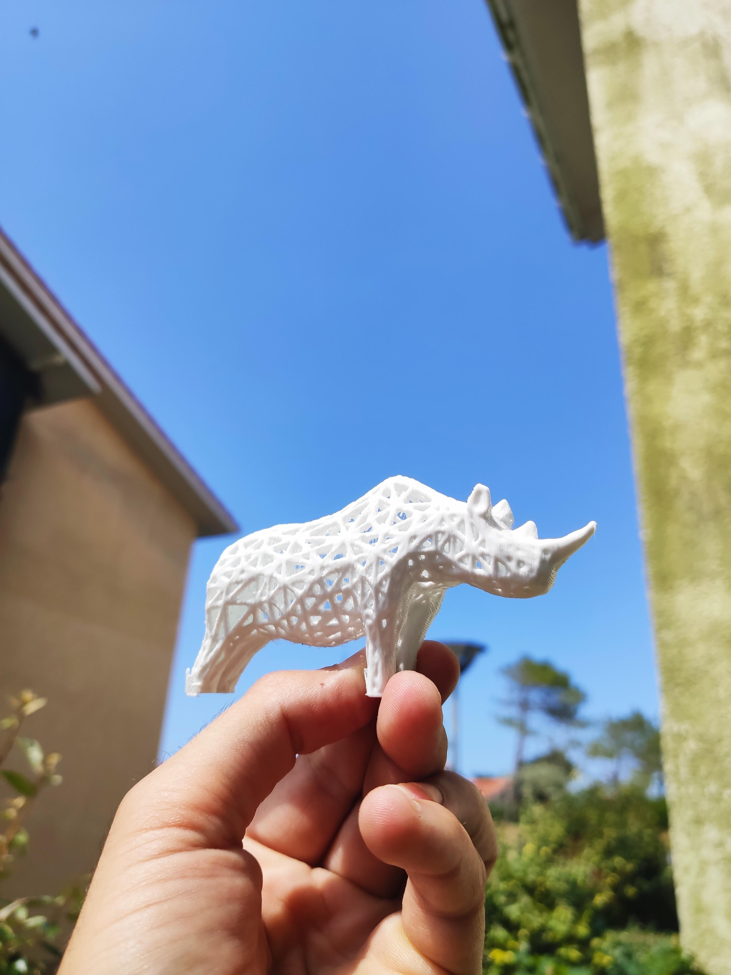 IMG_20200619_161227.jpg Télécharger fichier STL Rhino Voronoï • Design pour imprimante 3D, motek