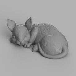 souris allongé rendu 3 .png Download STL file elongated mouse • 3D printing template, Motek3D