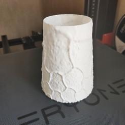 Download free 3D printer designs Fuzzy vase, Motek3D