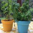 "STL Pot de fleurs ""Trioclassic"" 3dgregor, 3dgregor"