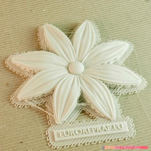 12b.jpg Download STL file flowers: Aster - 3D printable model • 3D printable template, euroreprap_eu