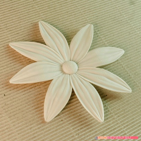 05b.jpg Download STL file flowers: Aster - 3D printable model • 3D printable template, euroreprap_eu