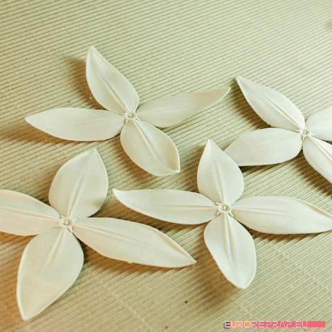 Fichier 3D des fleurs : Ixora - Modèle imprimable 3D, euroreprap_eu