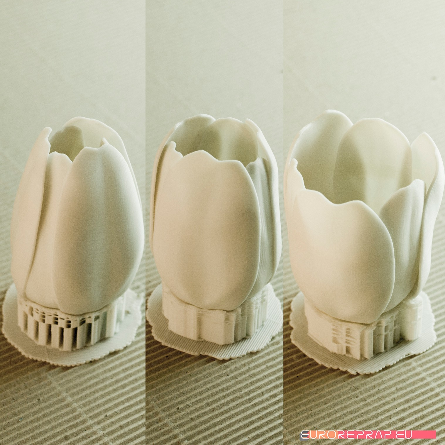 07.jpg Download STL file flowers: Tulip - 3D printable model • 3D printable design, euroreprap_eu