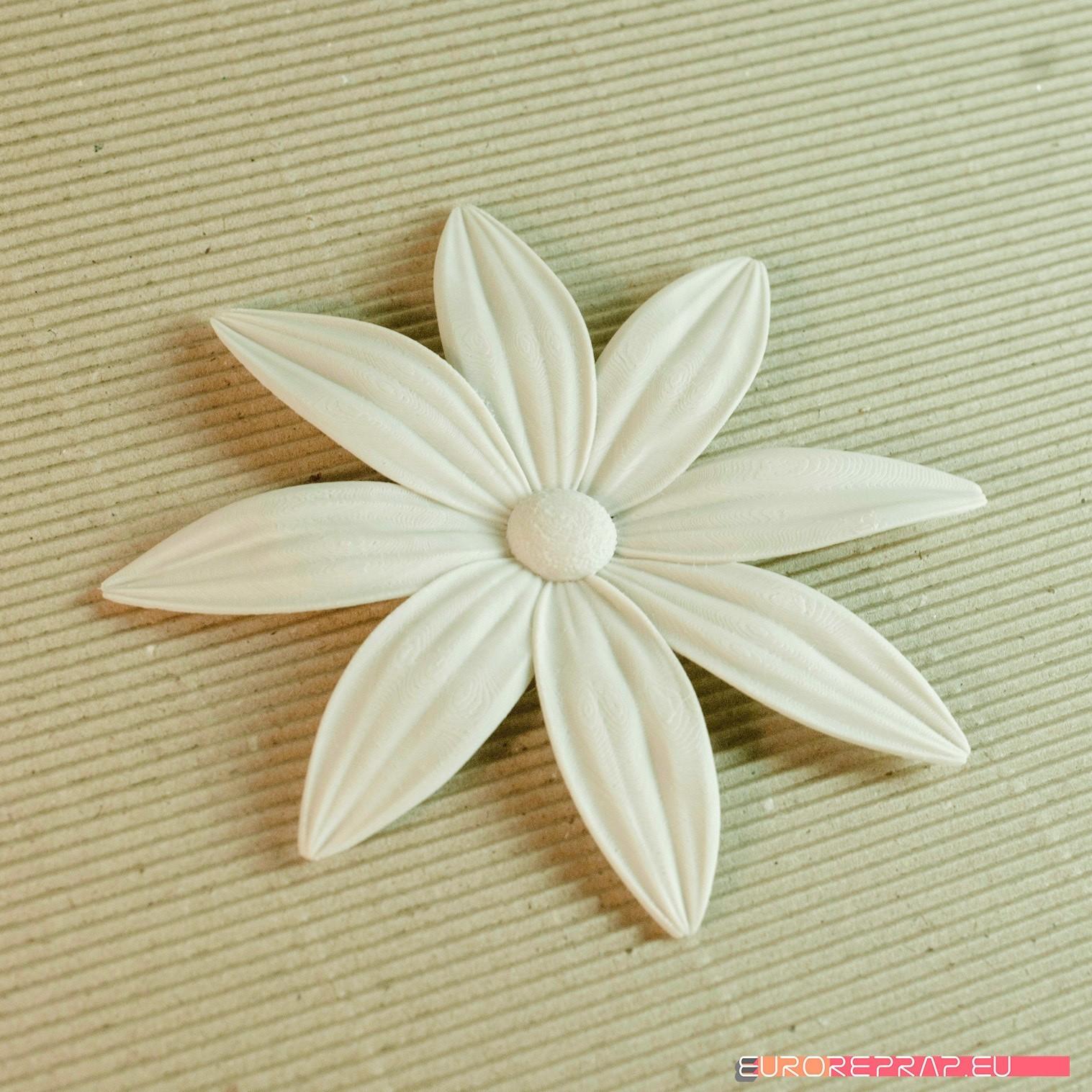 02b.jpg Download STL file flowers: Aster - 3D printable model • 3D printable template, euroreprap_eu