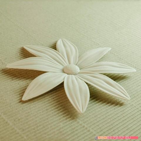 04b.jpg Download STL file flowers: Aster - 3D printable model • 3D printable template, euroreprap_eu