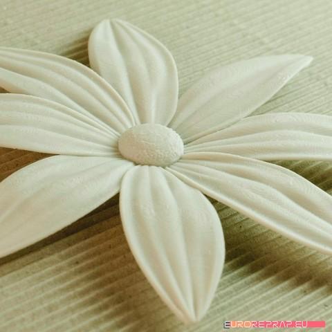 03b.jpg Download STL file flowers: Aster - 3D printable model • 3D printable template, euroreprap_eu
