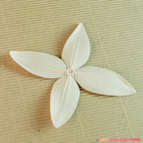 04b.jpg Download STL file flowers: Ixora - 3D printable model • 3D printing object, euroreprap_eu