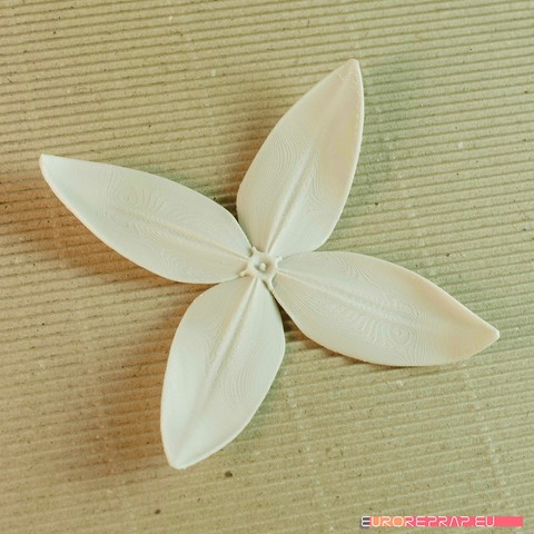 05b.jpg Download STL file flowers: Ixora - 3D printable model • 3D printing object, euroreprap_eu