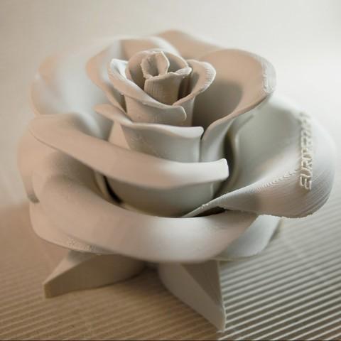 STL files Rose - real flower (without inscription), euroreprap_eu