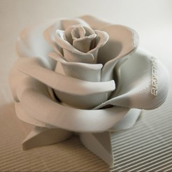 3D printer file Rose - real flower (without inscription), euroreprap_eu