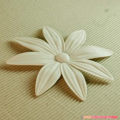 STL file flowers: Aster - 3D printable model, euroreprap_eu