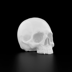Download 3D printing templates Human Skull, siSco