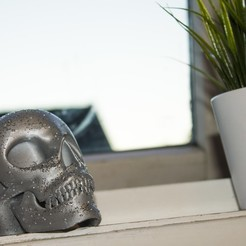 IMG_4728.JPG Download free STL file Skull • 3D printable model, Gunnarf1986