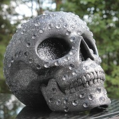 Download free 3D printer model Skull with diamonds, Gunnarf1986