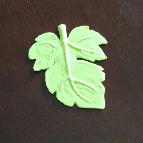 Free 3D print files Fig Leaf, mag-net