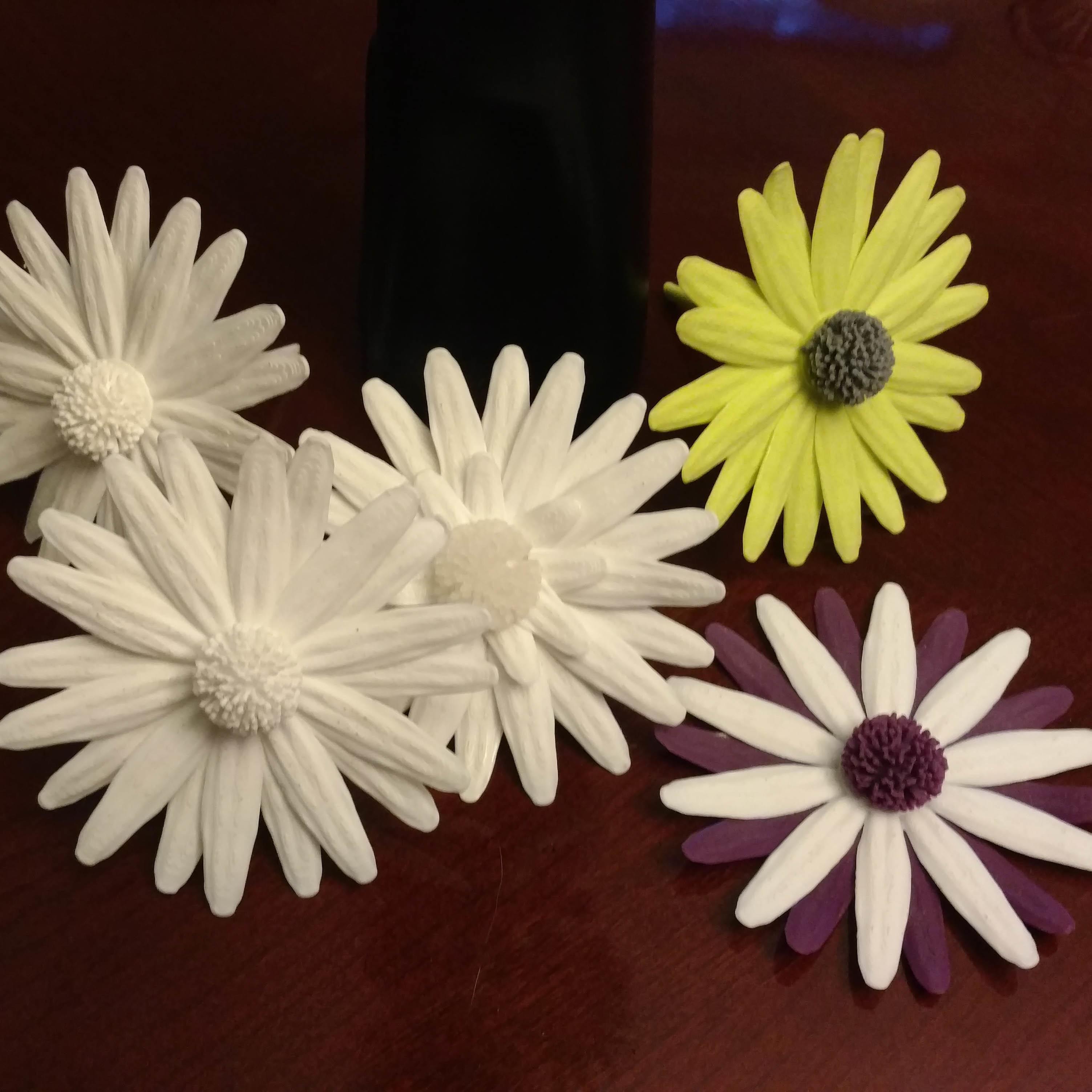 2.jpg Download free STL file Daisy - Flat flower • 3D printable template, mag-net