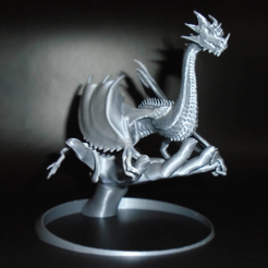 Free STL file Dragonology, mag-net