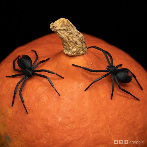 Download free 3D printing files Black Widow Spider, agepbiz