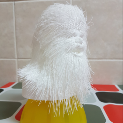 Free 3D print files Hairy Chewbacca, Migfue