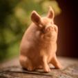 Download free STL file Garden Pig • 3D printable template, WorksBySolo