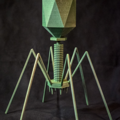 Capture d'écran 2017-02-24 à 17.47.13.png Download free STL file Bacteriophage - T4 Virus • 3D print model, WorksBySolo