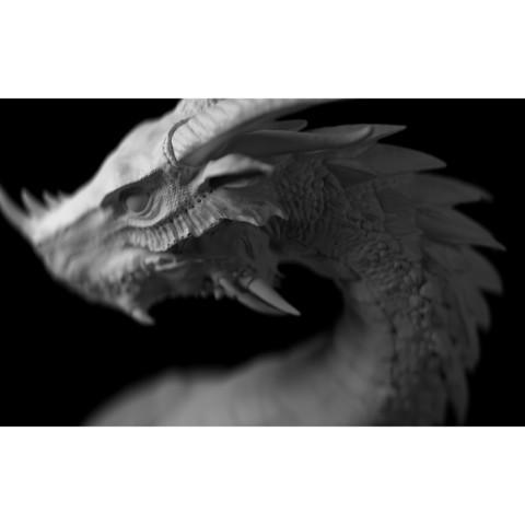06.jpg Download STL file Era Dragon • 3D print object, Zhong