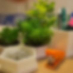 Download free 3D printer files Polygonal pot, AlbertFarres