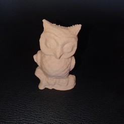 20190810_125735.jpg Download free STL file 3 owl models (scanner with phone, treat with (photo recap) on PC) • 3D printing template, YOHAN_3D