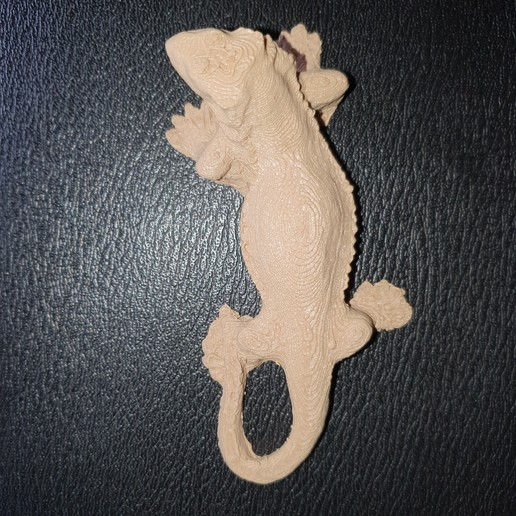 20190810_125916.jpg Download free STL file lizard (scanner with telephone, treat with (photo recap) on PC) • 3D printing design, YOHAN_3D