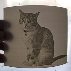 Download free 3D print files Simba - A cat Lithophane, xchgre