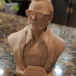 Impresiones 3D gratis Monumento a Stan Lee, Chaco