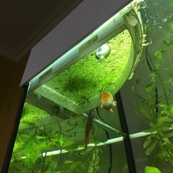 Aquarium_1.jpg Download free OBJ file Aquarium floating barrier for duckweed • 3D printer template, Gogorian