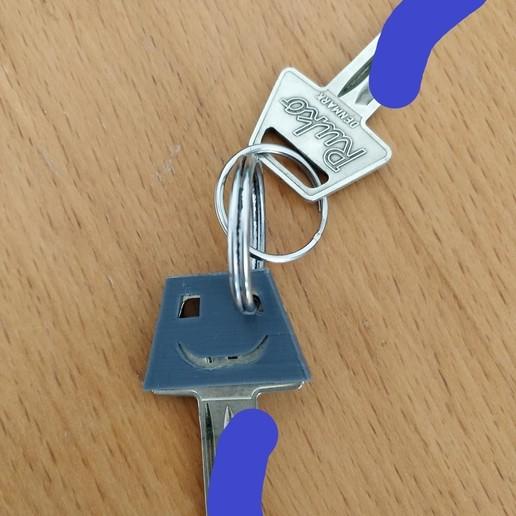 Download free STL file Ruko 600 Key Shroud • Design to 3D print, imonsei